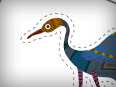 Heron 2 (Cut-out for Kids)