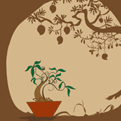 Grow A Tropical Tree
