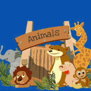 Animal Theme Party