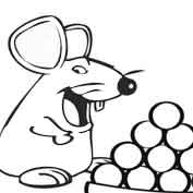 Rat with Laddu