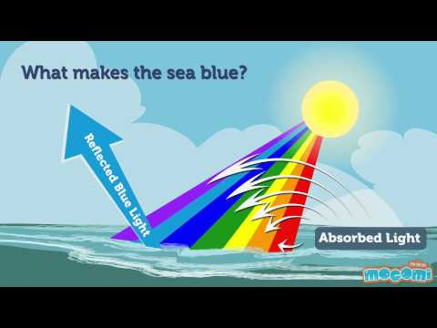 Why Is The Sky Blue And Sea Blue Geography For Kids