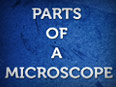 Parts of a Microscope – Facts about Microscope – Part II