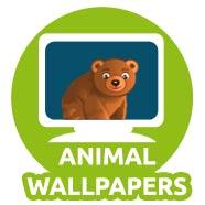 Animal Wallpapers for Kids 02
