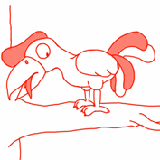 How to draw a Hornbill