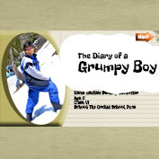The Diary of a Grumpy Boy