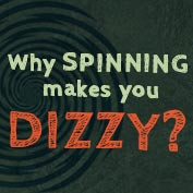 Why does spinning make you dizzy?