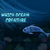 Which Ocean Creature  are you?