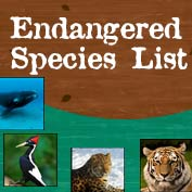 Endangered Species List