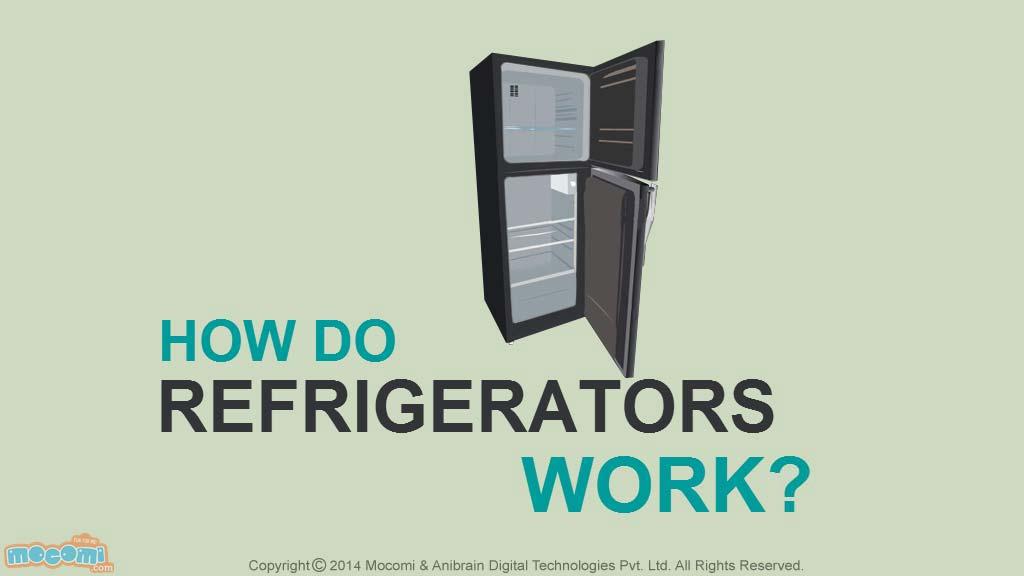 How Refrigerators Work Diagram Wiring