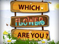 Which Flower are you?