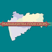 Food Crops of Maharashtra