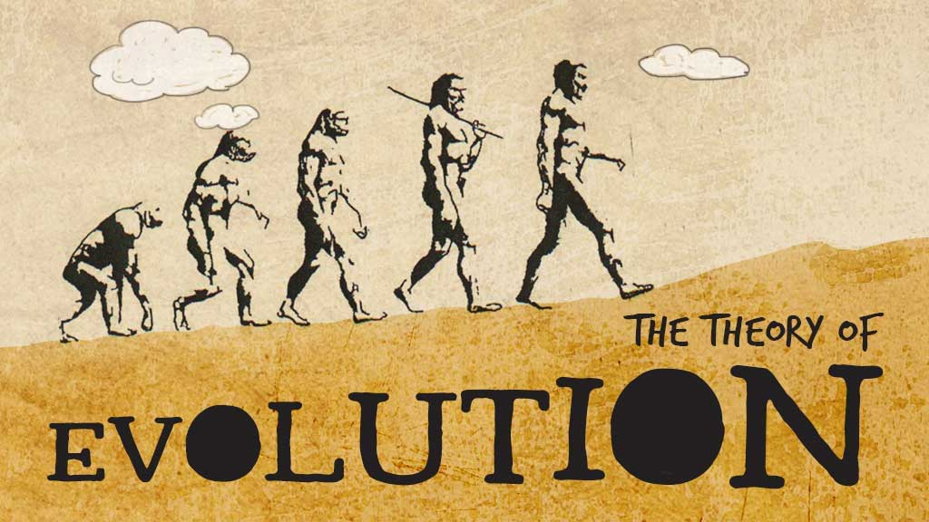 Darwins Theory Of Evolution  Biology For Kids  Mocomi Darwins Theory Of Evolution Japanese Essay Paper also Persuasive Essay Sample High School  Public Health Essays