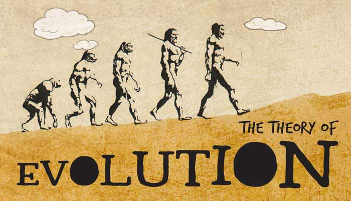 a look at major theories explaining the human evolutionary history Given the abundant evidence supporting the theory of biological evolution, it is highly probable that evolution has occurred and is still occurring today however, there remains speculation in regards to the specific evolutionary path of some species lines and the relative importance of the different natural processes responsible for their evolution.