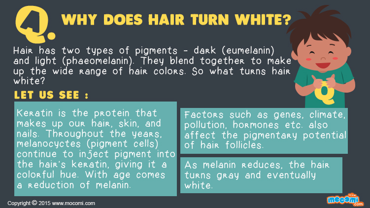 Why does Hair turn White?