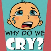 Why do we Cry? - hp