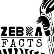 Zebra Facts - HP