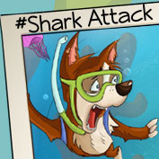 Shark Attack - hp