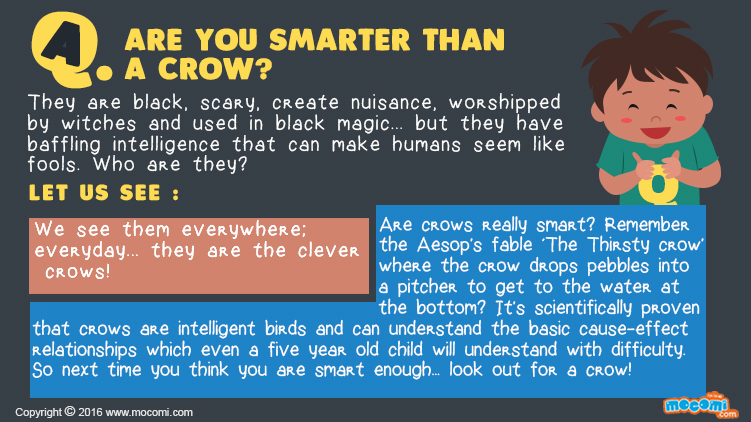 How smart are Crows?