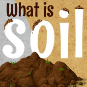What is soil and How is it Formed? - hp