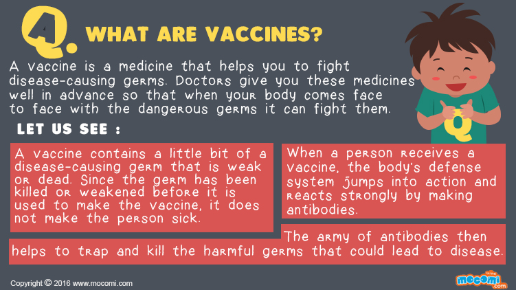 What are Vaccines?