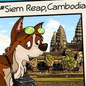 Siem Reap Angkor in Cambodia - hp