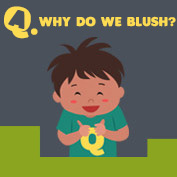 Why do we Blush? - hp