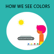 How do we see Color? hp