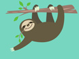Sloth Facts and Information