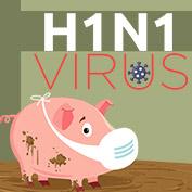What is Swine Flu (H1N1)? - hp