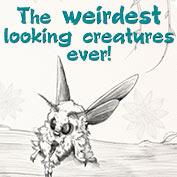 Top 10 Weirdest Animals in the World