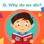 Why do we die? hp