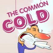 Common Cold hp