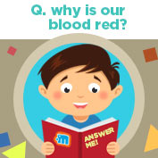 Why is Blood Red in Colour? - hp