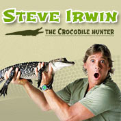Steve Irwin -  Wildlife Expert