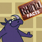 facts about rhinoceros - hp