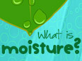 What is Moisture?