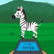 Zebra are Barcodes for Scientists! - Square Thumbnails Image