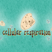 What is Cellular Respiration? - Square Thumbnails Image