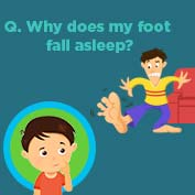 Why do Feet Fall Asleep? - Square Thumbnails Image