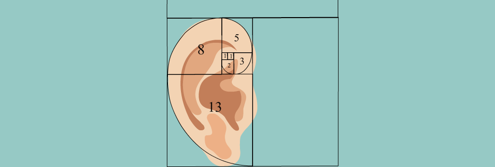 What is the Fibonacci sequence? - Slider Image