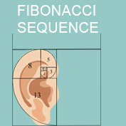What is the Fibonacci sequence? - Square Thumbnails Image