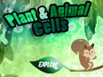 Plant Cell and Animal Cell: Comparison