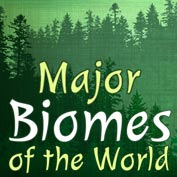 What is a Biome – Square Thumbnails