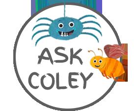 Ask Coley Health Tips Mocomi Kids