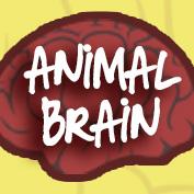Animal brain size comparison square thumbnail