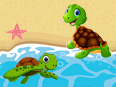 Turtle vs Tortoise : Difference and Facts