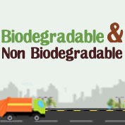 Biodegradable and Non Biodegradable – Square Thumbnails
