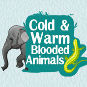 Cold and Warm Blooded Animals - HP