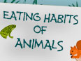 Eating Habits of Animals