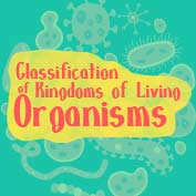 Kingdom classification of living organism – Square Thumbnails